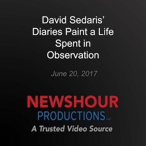 David Sedaris' diaries - Paint a life spent in observation